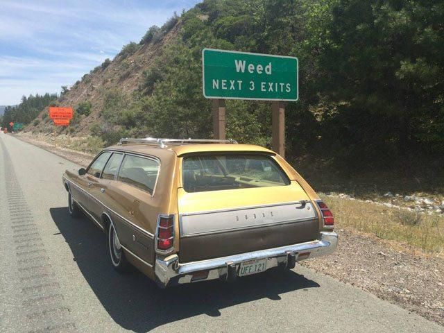 1973 Dodge Coronet Crestwood station wagon 3